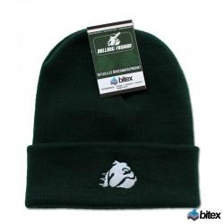 Beanie Mütze in grün